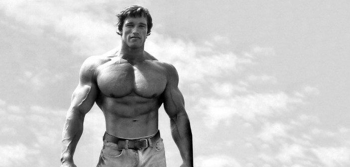 20925-arnold-schwarzenegger-1280x800-male-celebrity-wallpaper
